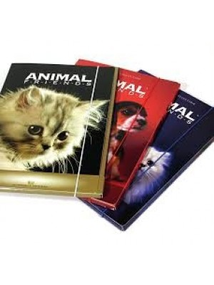Classeur 4A animal friends PP 25 MM