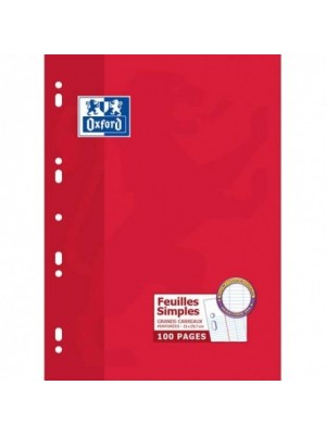 Feuilles Simples 100pages/Grand Format 21*29.7/Grands Carreaux/90g /blanches